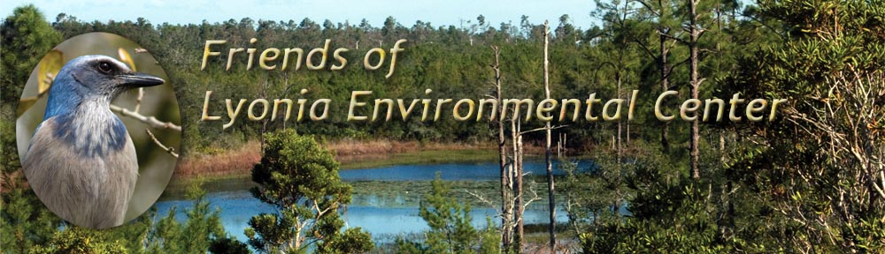 Friends of Lyonia Environmental Center